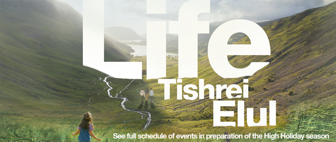 5774_LIFE WEB Banner copy